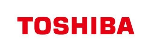 株式会社東芝 ソフトウェア技術センター